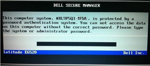 Dell 1F5A System password